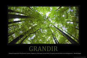 Grandir (French Translation)