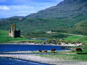 Ardvreck Castle on Loch Assynt, Assynt, Scotland by Grant Dixon
