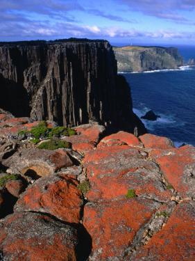 Dolerite Coastal Cliffs of Cape Pillar, Tasman National Park, Tasmania, Australia by Grant Dixon