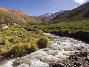 River in Rio Colorado Valley by Grant Dixon