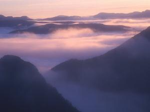 Valley Mist at Dawn, South West National Park, Tasmania, Australia by Grant Dixon