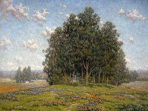 Wildflowers and Eucalyptus by Granville Redmond