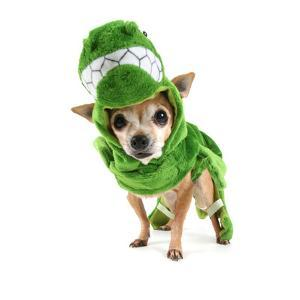 A Cute Chihuahua Dressed Up as a Dinosaur by graphicphoto