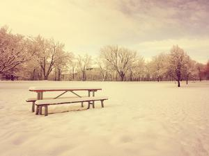 A Scenic Cold Winter Landscape with Snow and Trees Done with a Retro Vintage Instagram Filter by graphicphoto