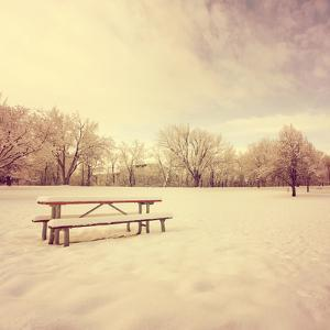 A Scenic Cold Winter Landscape with Snow and Trees Toned with an Instagram like Warm Filter by graphicphoto