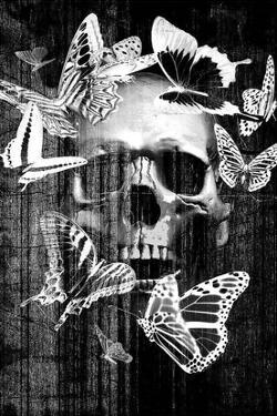 Skull Butterfly Crown by GraphINC