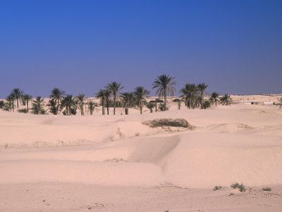 Great Dune on the Sahara, Douz, Tunisia