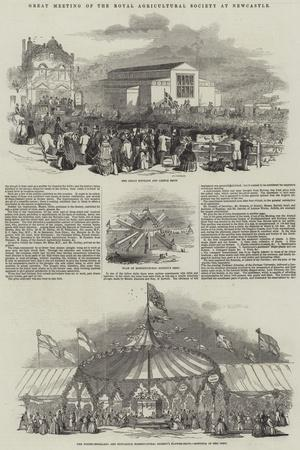 https://imgc.allpostersimages.com/img/posters/great-meeting-of-the-royal-agricultural-society-at-newcastle_u-L-PVW8QM0.jpg?p=0