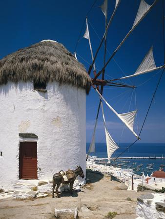 https://imgc.allpostersimages.com/img/posters/greece-mykonos-mykonos-city-windmill-donkey_u-L-Q11YJZ30.jpg?p=0