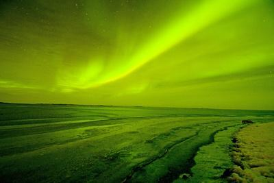 https://imgc.allpostersimages.com/img/posters/green-northern-lights-over-the-sea-beaufort-sea-anwr-alaska-usa_u-L-PXR8J50.jpg?p=0