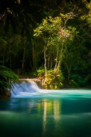 https://imgc.allpostersimages.com/img/posters/green-paradise_u-L-Q1DBI750.jpg?p=0