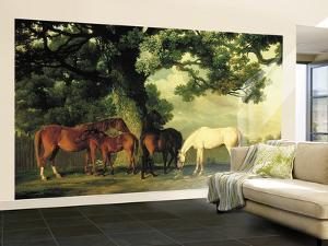 Green Pastures With Shady Glen, Thoroughbred Horses Huge Mural Art Print Poster