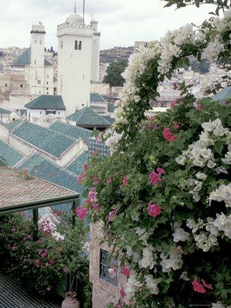 https://imgc.allpostersimages.com/img/posters/green-tiled-roof-and-minaret-in-the-medina-fes-morocco_u-L-P5876C0.jpg?p=0