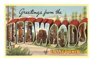 Greetings from Redwoods, California