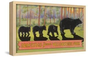 Greetings from Yellowstone National Park, Bears