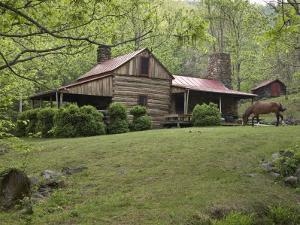 Horse Grazing in the Yard of a Mountain Log Cabin by Greg Dale