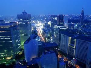 City Skyline from Sky Bar, Park Hyatt Tokyo, Tokyo, Japan by Greg Elms