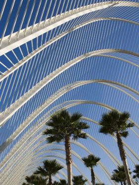 El Ombracle (Walkway / Garden ), City of Arts and Sciences, Valencia, Spain by Greg Elms
