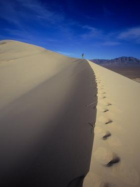 Woman Hiking, Kelso Sand Dune, CA by Greg Epperson