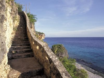 1,000 Steps Limestone Stairway in Cliff, Bonaire, Caribbean by Greg Johnston