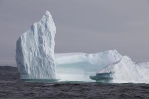 Icebergs, Kings Cove, Newfoundland, Canada by Greg Johnston