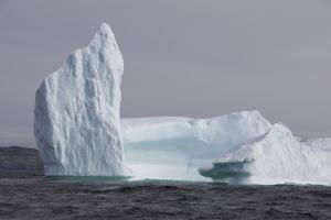 Icebergs, Kings Cove, Newfoundland, Canada by Greg Johnston