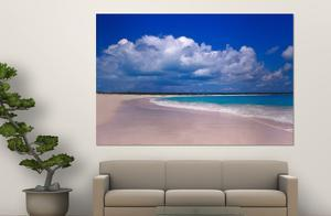Pink Sand Beach, Harbour Island, Bahamas by Greg Johnston