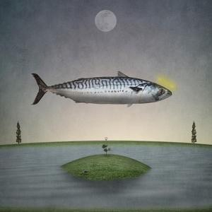 Holy Mackerel by Greg Noblin
