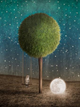 Tappy and the Moon