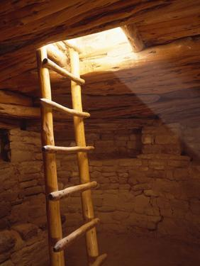 Ladder in a Kiva in Mesa Verde National Park, Colorado by Greg Probst