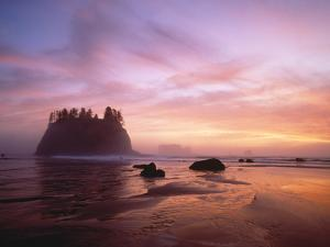 Sea Stacks at Sunset, 2nd Beach, Olympic National Park, Wa by Greg Probst