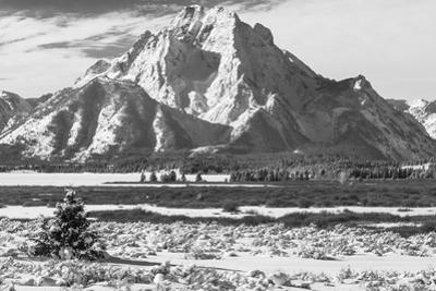 A Black and White Photograph of Mount Moran in the Teton Mountains in Winter