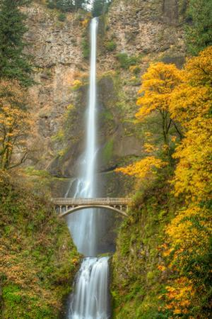 Multnomah Falls and Historic Bridge in the Columbia River Gorge National Scenic Area by Greg Winston