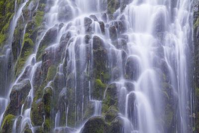 The Lower Proxy Falls Cascade over Moss Covered Basalt in the Three Sisters Wilderness Area
