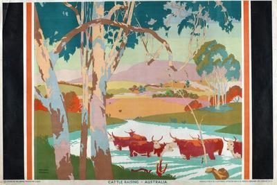 Cattle Raising - Australia, 1927