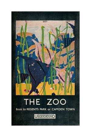 'The Zoo', 1924