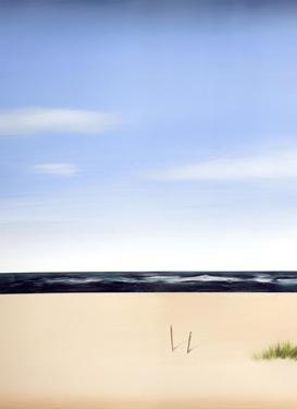Palm Beach 1 by Gregory Garrett