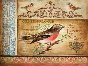 Ornithology by Gregory Gorham