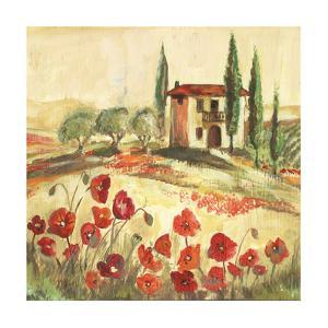 Poppy Field I by Gregory Gorham