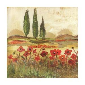 Poppy Field II by Gregory Gorham