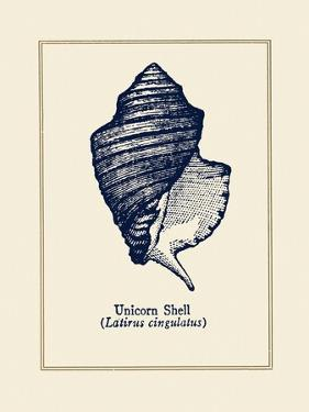Unicorn Shell by Gregory Gorham