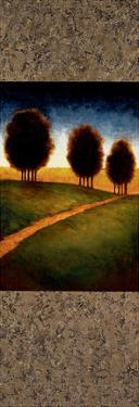 Lighted Path I by Gregory Williams