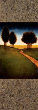 Lighted Path II by Gregory Williams