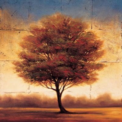 Splendor II by Gregory Williams