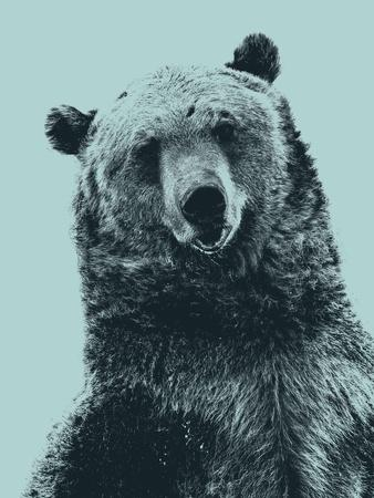 https://imgc.allpostersimages.com/img/posters/grizzly-bear_u-L-Q1HTD2O0.jpg?artPerspective=n