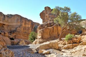 Sesriem Canyon near Sossusvlei. Namibia by Grobler du Preez