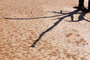 Shadow on Cracked Mud by Grobler du Preez