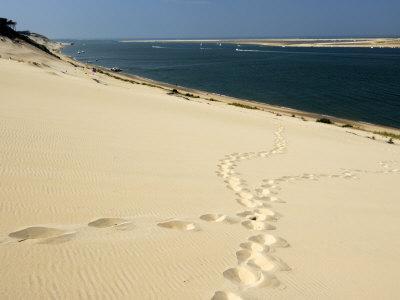 Dune Du Pyla, Bay of Arcachon, Cote D'Argent, Gironde, Aquitaine, France