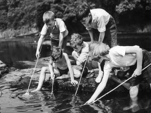 Group of Children Fishing in a Stream with Nets