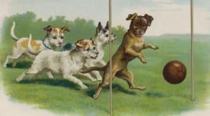 Group of Four Dogs Play a Lively Game of Football One of Them is About to Score a Goal